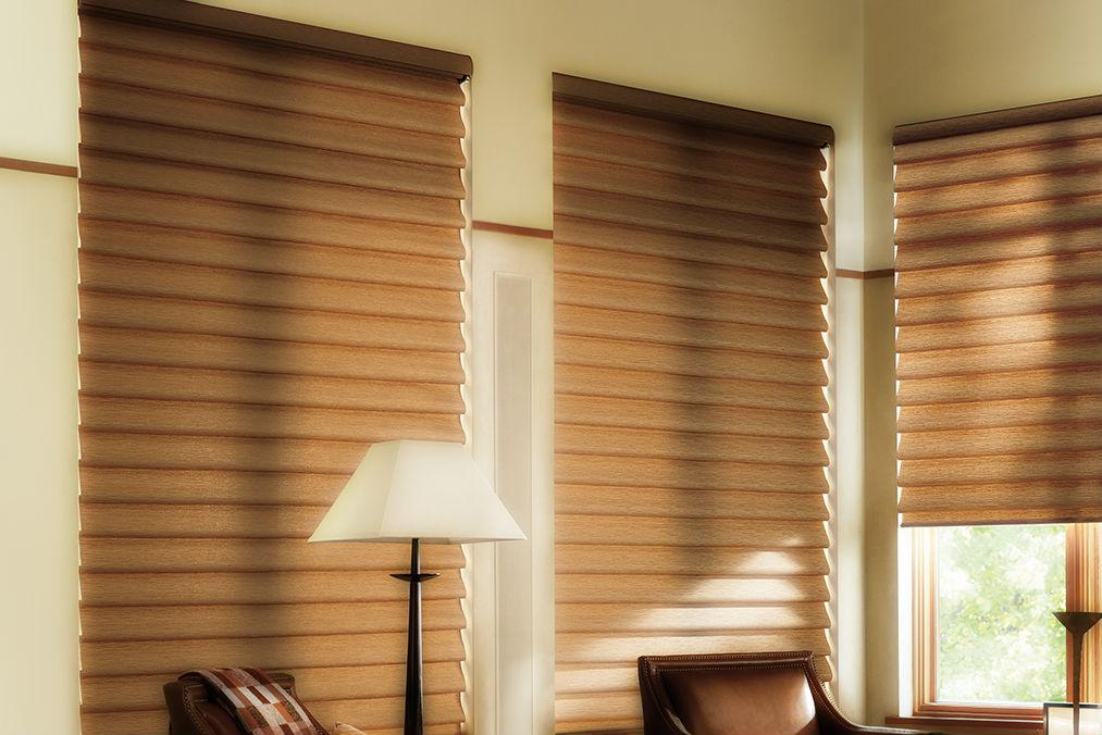 Roman Shades Cleaning Service